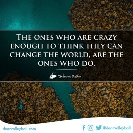 The ones crazy enough to think they can change the work are the ones who do and other motivational volleyball quotes on DearVolleyball.com