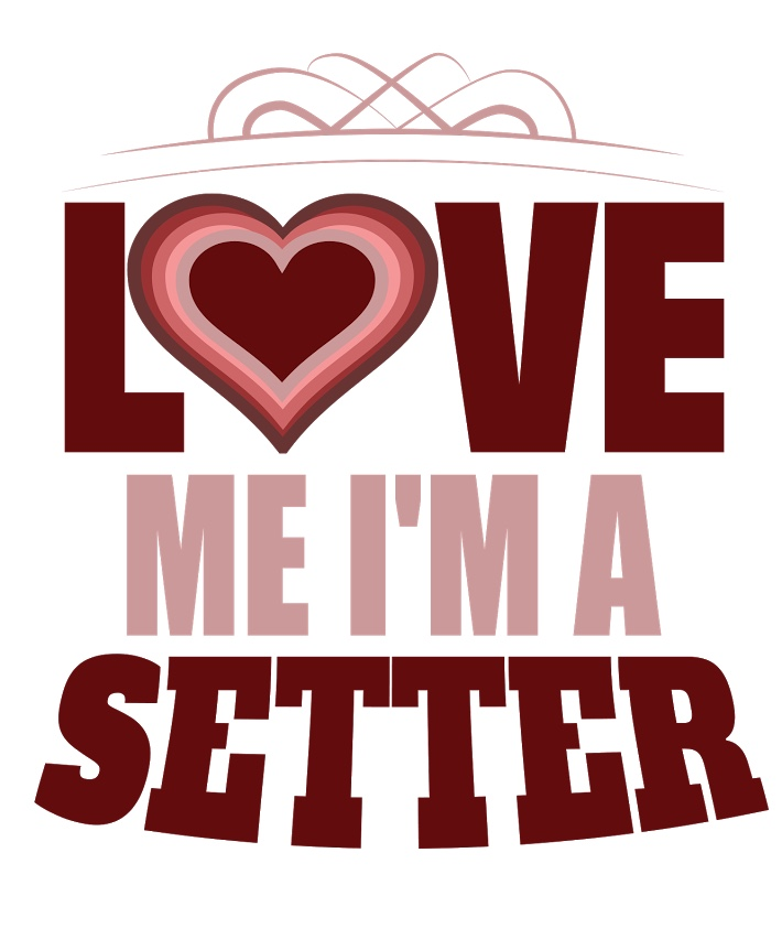 love me Im a setter volleybragswag volleyball sayings tshirt
