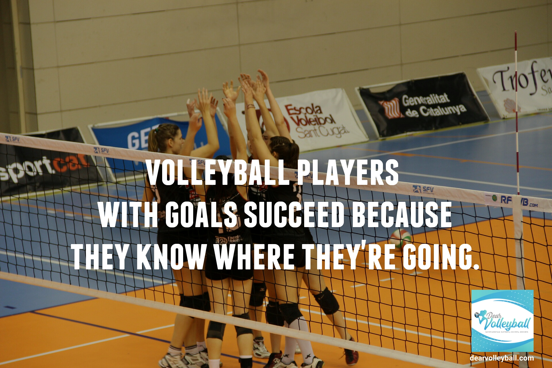 Volleyball players with goals succeed because they know where they are going and other motivational volleyball quotes on Dear Volleyball.com