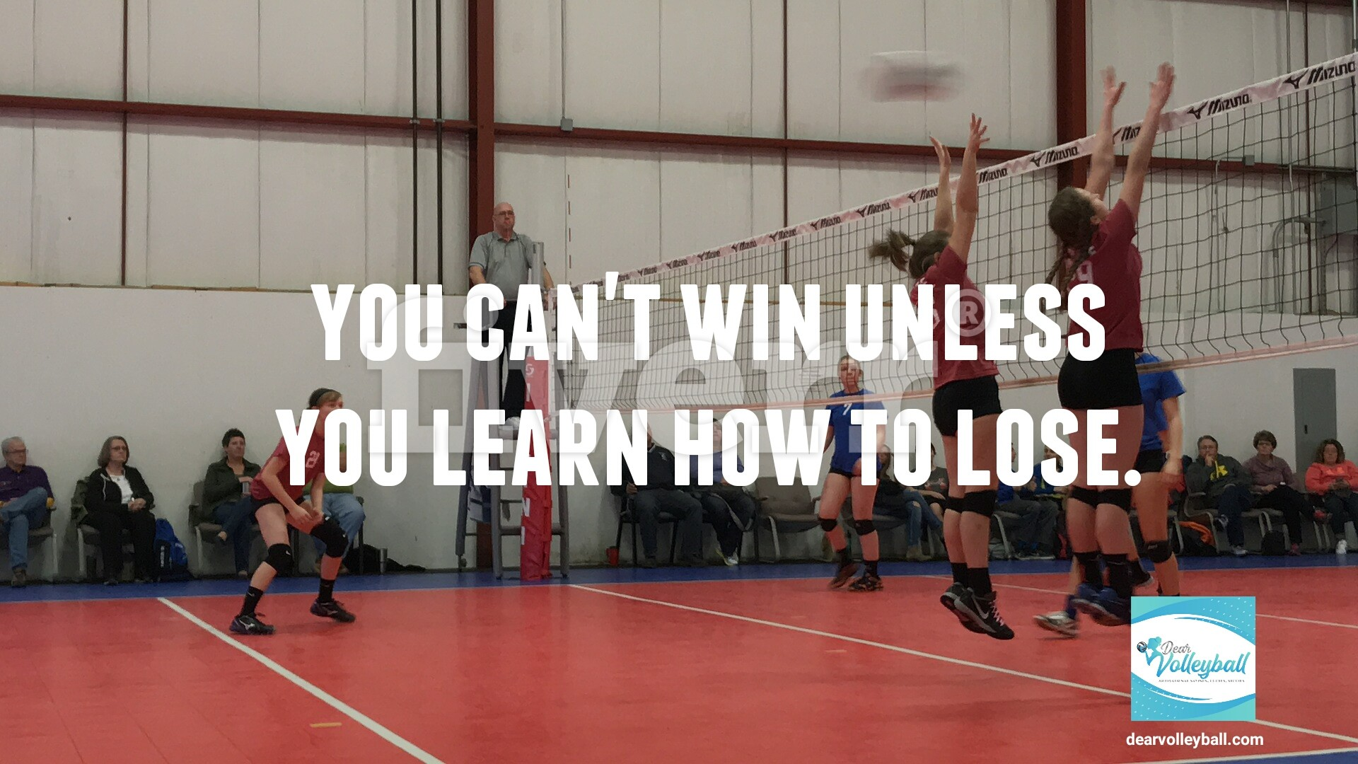 You can't win unless you learn how to lose and other motivational volleyball quotes on Dear Volleyball.com