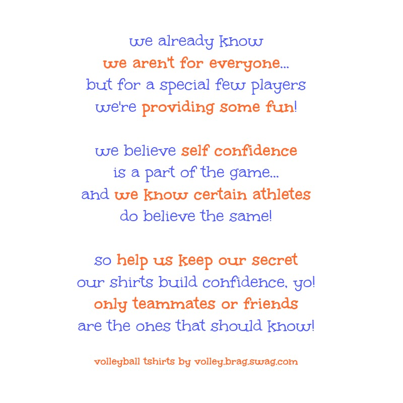 we already know we aren't for everyone and other volleyball slogans for volleyball hitters on DearVolleyball.com