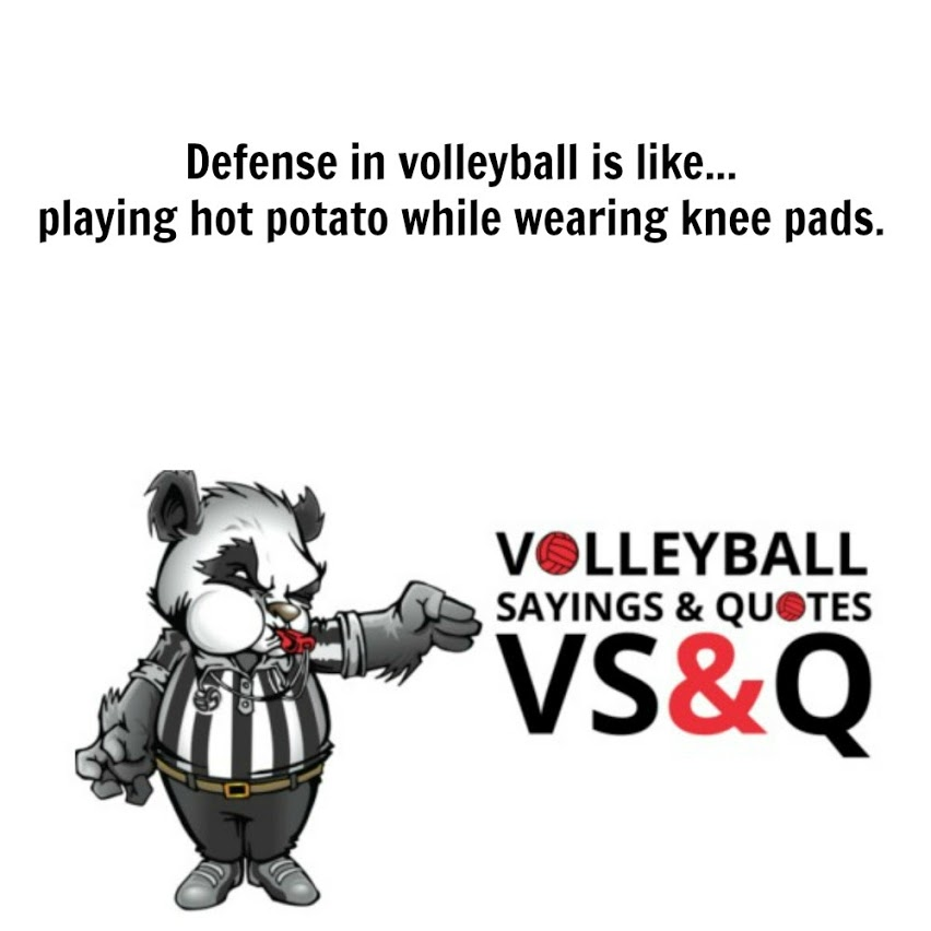 volleyball sayings and quotes vs&q