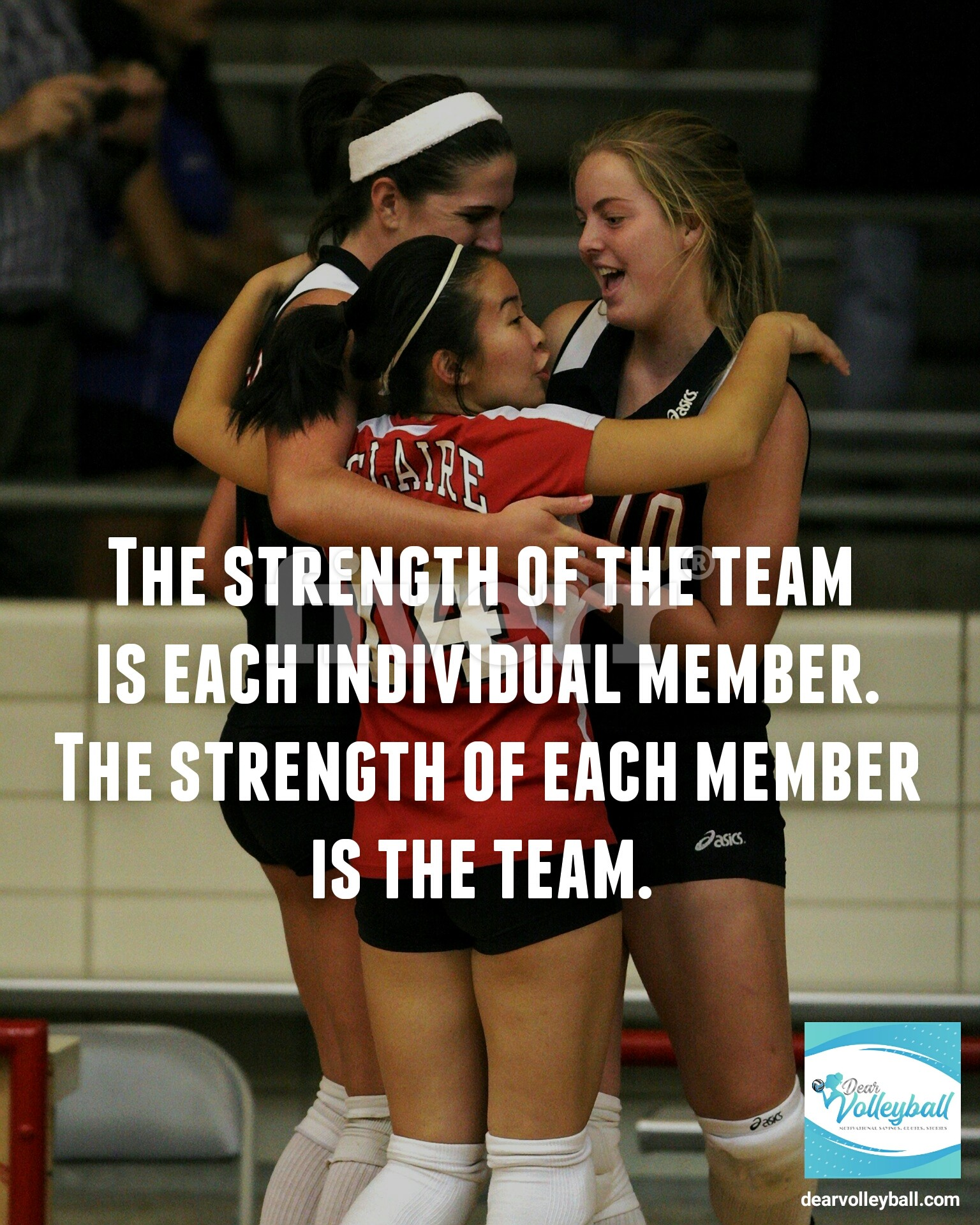 The strength of the team is each individual member. The strength of each member is the team and other volleyball coach quotes on DearVolleyball.com.